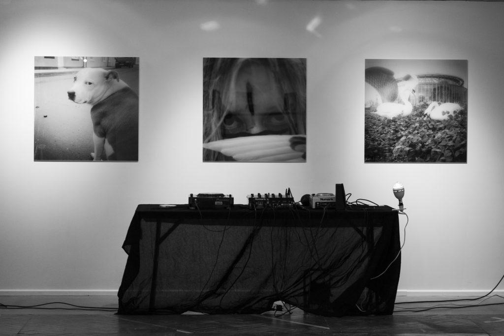 Sophie Lisa Beresford Abject Gallery Sunderland